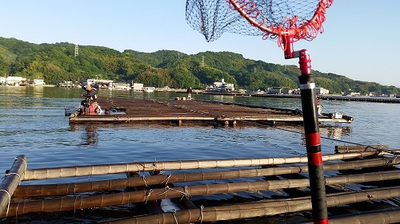 釣り場 (1).jpg