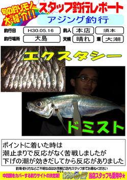 H30.05.17.2.jpg
