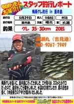 blog-choufu-20180529-murati.jpg