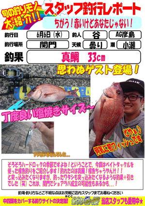 blog-20180606-hikoshima-madai.jpg