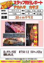 blog-20180620-tsushima-asahina.jpg