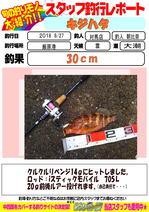 blog-20180828-tsushima.jpg