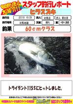 blog-20181030-tushima.jpg