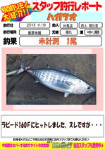 blog-20181119ーtushima-asahina.jpg