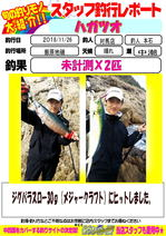 blog-20181128-tushima-motoishi.jpg