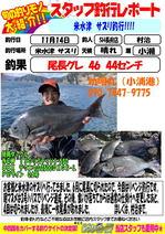 blog-choufu-20181114-murati.jpg