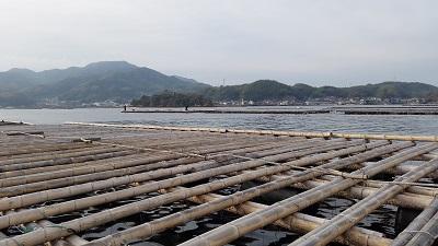 筏 (1).jpg