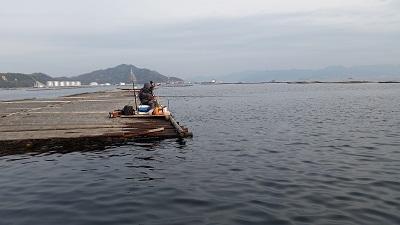 筏 (2).jpg