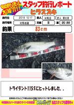 blog-20181217-tsushima.jpg