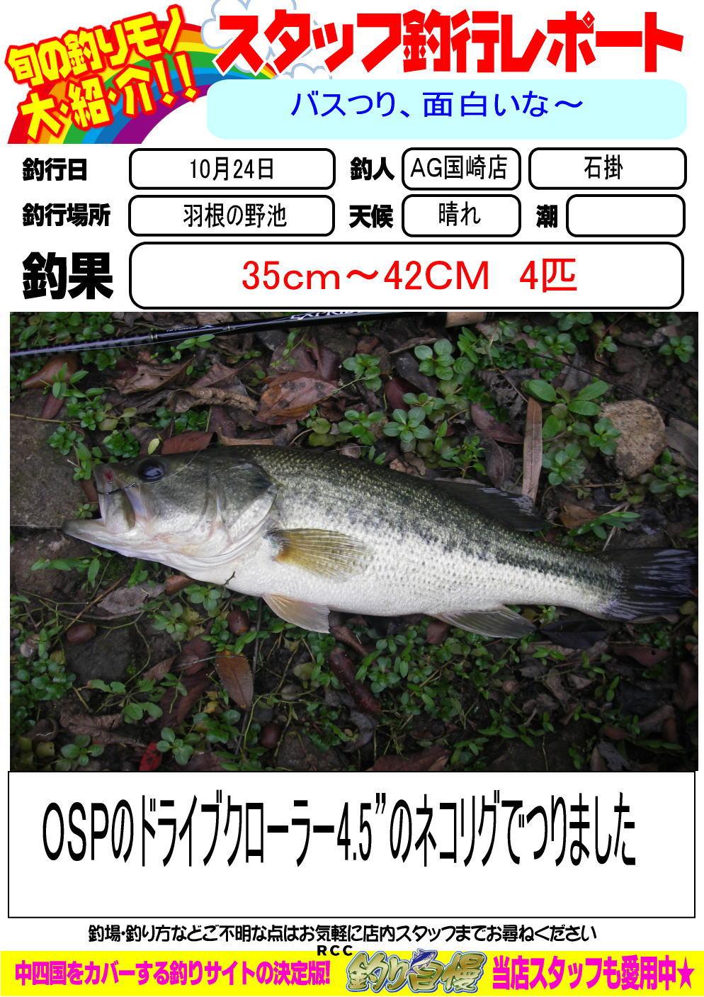 http://www.e-angle.co.jp/shop/blog/blog-20131022-kunisaki-basu.jpg