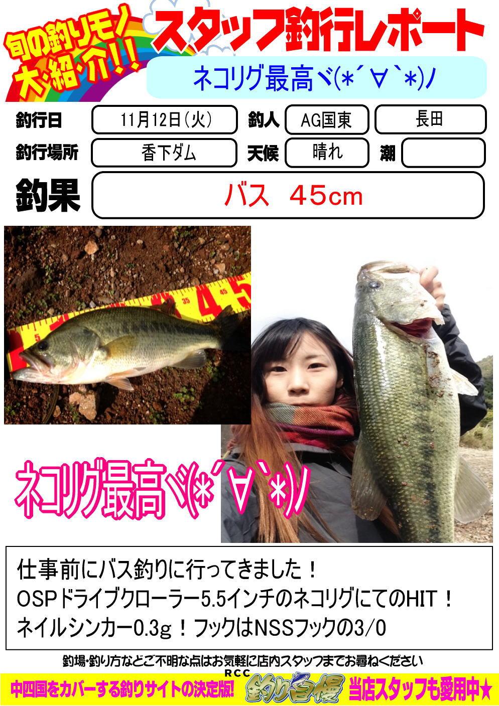 http://www.e-angle.co.jp/shop/blog/blog-20131112-kunisaki-basu.jpg