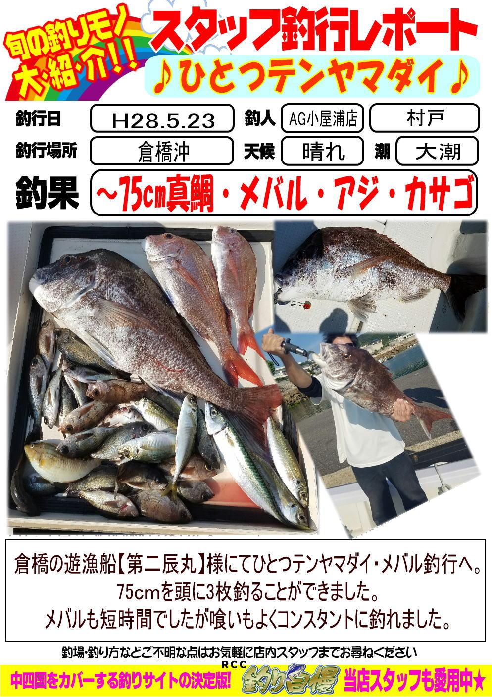 http://www.e-angle.co.jp/shop/blog/blog-2016-05-23-koyaura-hitotutennya.jpg