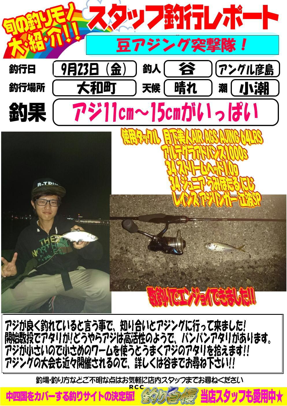 http://www.e-angle.co.jp/shop/blog/blog-20160923-hikoshima-aji.jpg