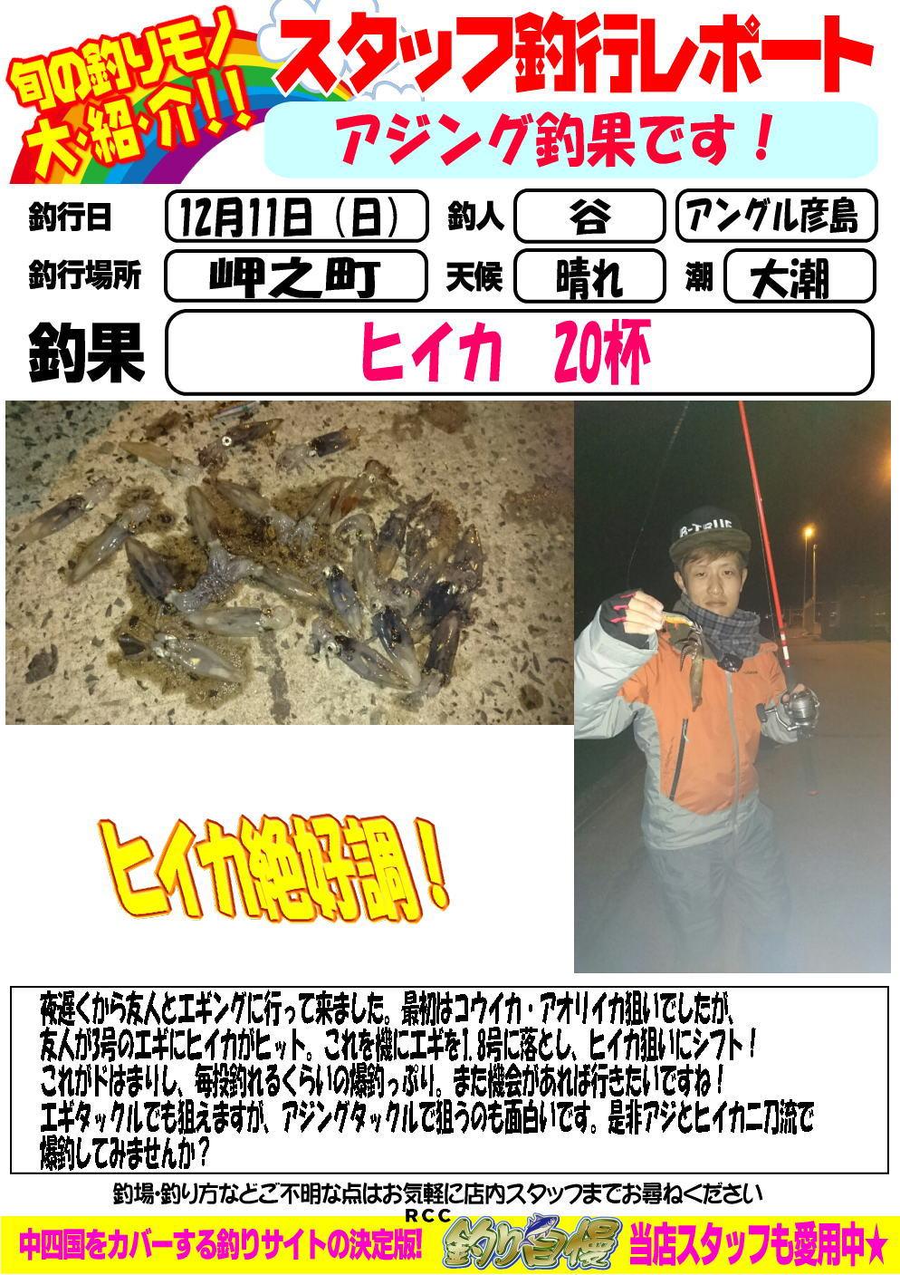 http://www.e-angle.co.jp/shop/blog/blog-20161211-hikoshima-hiika.jpg