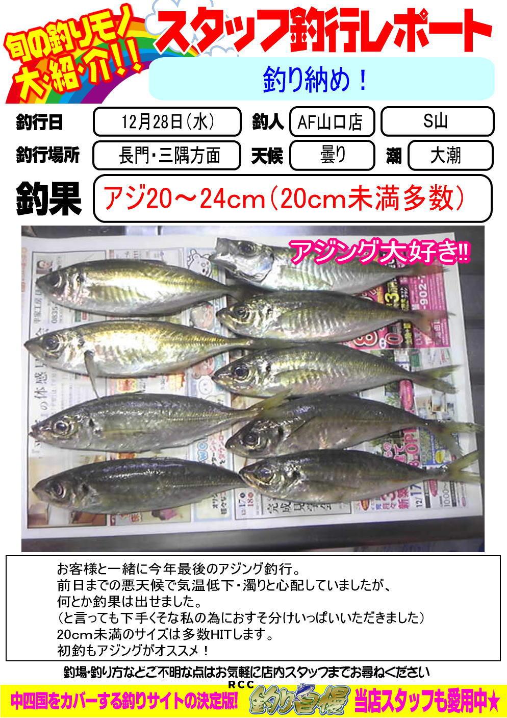 http://www.e-angle.co.jp/shop/blog/blog-20161228-yamaguchi-ajing.jpg