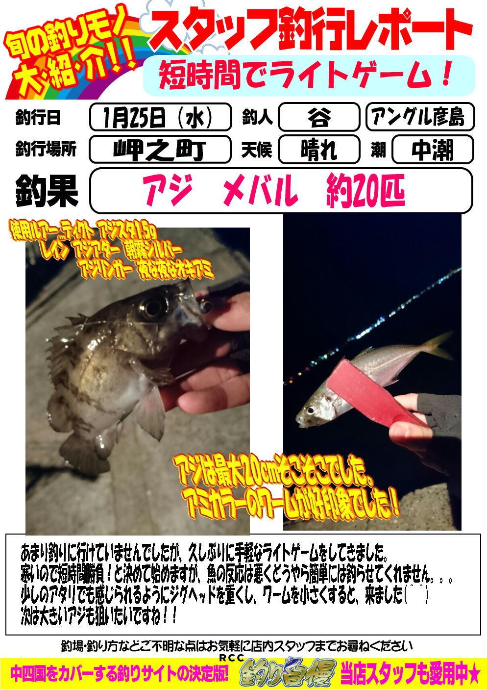 http://www.e-angle.co.jp/shop/blog/blog-20170125-hikoshima-ajimeba.jpg