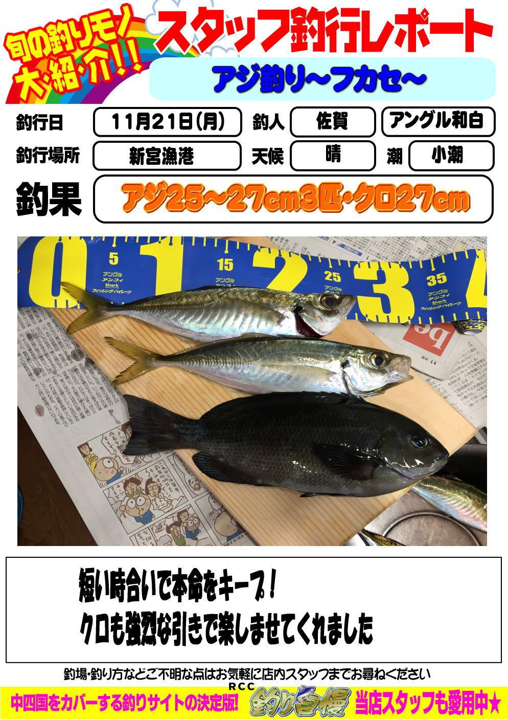 http://www.e-angle.co.jp/shop/blog/image.jpg%E3%82%A2%E3%82%B8.jpg