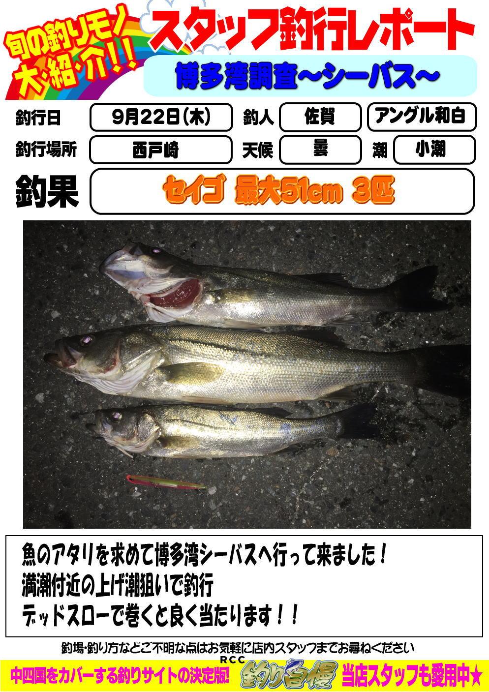 http://www.e-angle.co.jp/shop/blog/image.jpg%E3%82%B7%E3%83%BC%E3%83%90%E3%82%B9.jpg