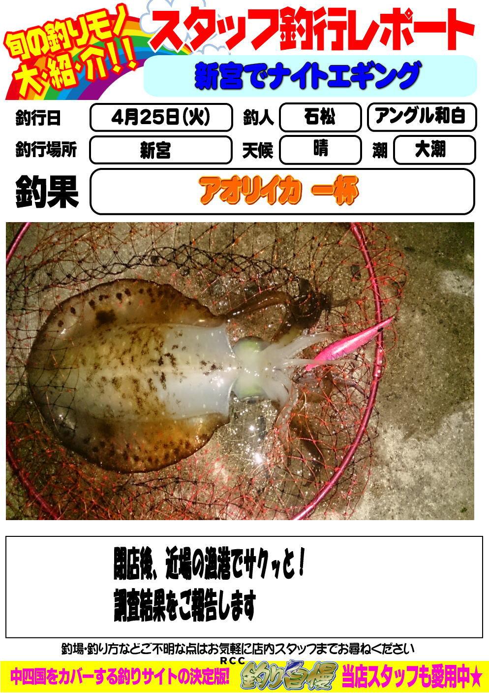 http://www.e-angle.co.jp/shop/blog/image.jpg%E7%9F%B3%E6%9D%BE%E3%82%A2%E3%82%AA%E3%83%AA.jpg