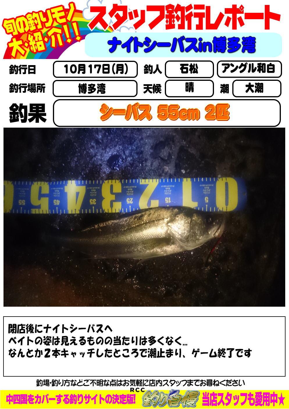 http://www.e-angle.co.jp/shop/blog/image.jpg%E7%9F%B3%E6%9D%BE.jpg