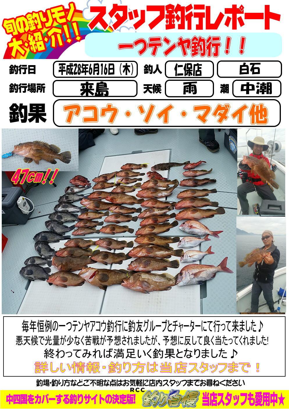 http://www.e-angle.co.jp/shop/blog/sutaltufu-20160618-niho-2.jpg