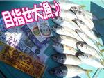 news-20130822-koyaura-yugyo1.jpg