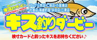 kisuda-bi- logo.jpg