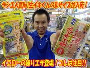 news-20131008-koyaura-sashiesa-.jpg