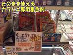 news-20131123-ooshimaten-ka2.jpgのサムネイル画像
