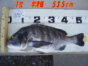 news-20131203-honten-1i udusama.jpg