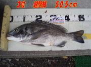 news-20131203-honten-3kosimasama.jpg