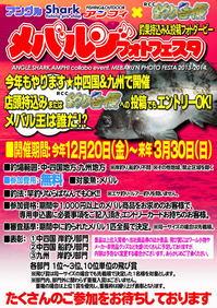 news-20131220-ooshimaten-mebaf1.jpg