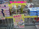 news-20140111-koyaura-kanntannsabiki.JPG