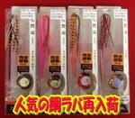 news-20140202-kaiyuu-tairaba.jpg