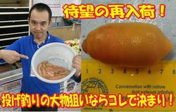 new20140307honkouji.jpg