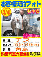 blog-sinsimo-20150609-hironaka-1.jpgのサムネイル画像