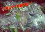 news-20150816-niho-risaikuru3.jpg