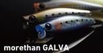 morethan-GALVA.jpg