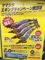 news-20160822-ooshimaten-02.jpg