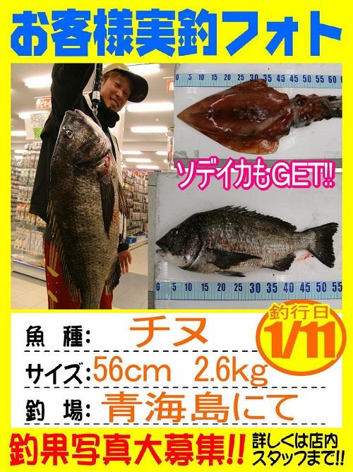 http://www.e-angle.co.jp/shop/photo/20140111-yamaguchi-tinu.jpg