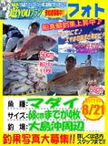 photo-okyakusama-20130821-koyaura-madai1.jpg
