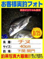 photo-okyakusama-20130825-kikugawa-chinu.jpg