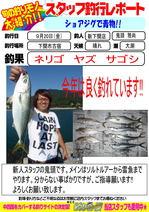 blog-20130920-web-02.jpg