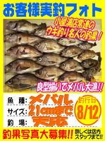 photo-okyakusama-20130831-koyaura-mebaru.jpg
