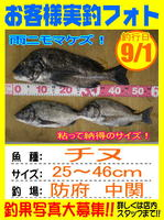 photo-okyakusama-20130901-houfu-chinu.jpg