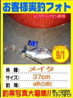 photo-okyakusama-20130901-kikugawa-tinu4.jpg
