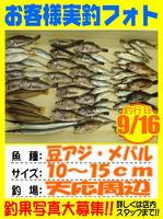 photo-okyakusama-20130917-Koyaura-mameaji01.jpg