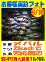 photo-okyakusama-20130917-Koyaura-mebaru.jpg
