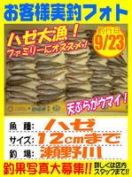photp-okyakusama-20130923-koyaura-haze.jpg