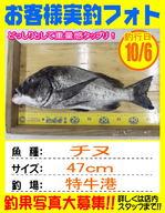 blog-okyakusama-20131006-kikugawa-tinu.jpg